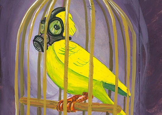 Painting of a canary in a cage wearing a gas mask