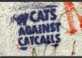 "graffiti image with a cat and the words ""Cats Against Catcalls"""