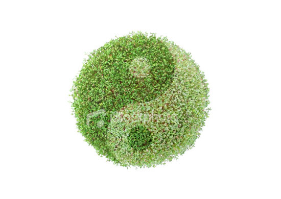 A yin yang sign made from flora