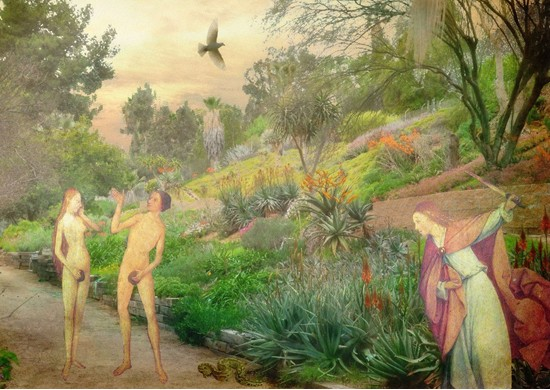 Picture of an unusual Garden of Eden